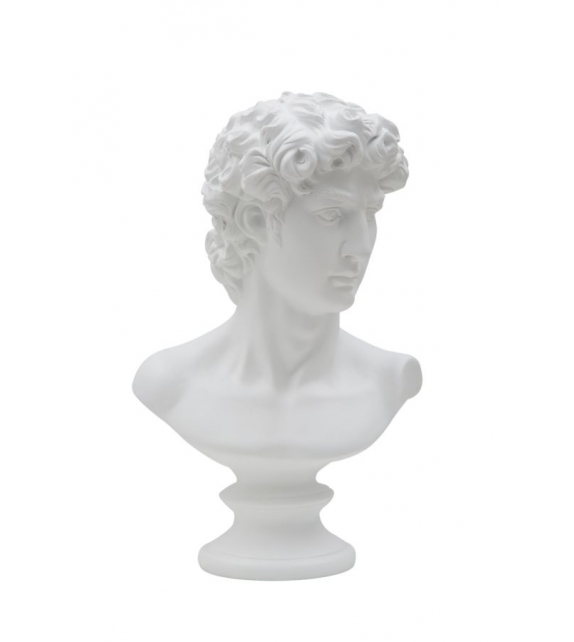 Scultura busto David roman
