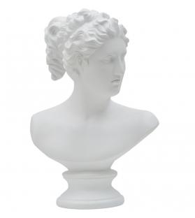 Scultura busto Venere roman woman