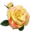 Rosa artificale