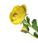 Ranuncolo fiore artificiale giallo