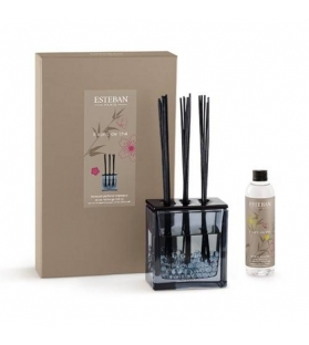 Bouquet Fragranza Trittico Esprit De The con ricarica 250ml - AZURE GREY EDITION