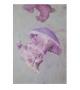 Stampa su tela con applicazioni medusa -a- cm 80x3,8x120