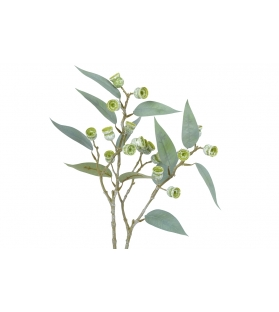 Eucalyptus ramo 85cm