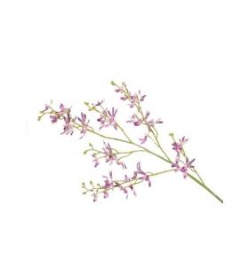 Orchidee ramo 36 fiori 97cm