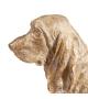 Statua Cane Basset Hound Oro Resina 33 X 14,50 X 22,50 cm