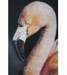 Stampa su Tela Flamingo con applicazioni 120X3,8X80