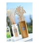Esteban Paris Bouquet Bamboo Profumato Citronella&Menta + ricarica 100ml