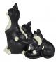 Gatti famigliola abbracciati bianco nero