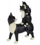 Gatti famiglia giocherelloni bianco nero