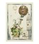 Strofinaccio in Lino Mongolfiera Ortaggi 50x70 cm
