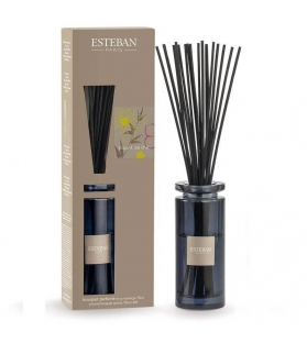 Esteban Paris Diffusore Bouquet Profumo Bacchette Esprit De The con ricarica da75ML - MOKA EDITION